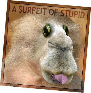 A Surfeit of Stupid